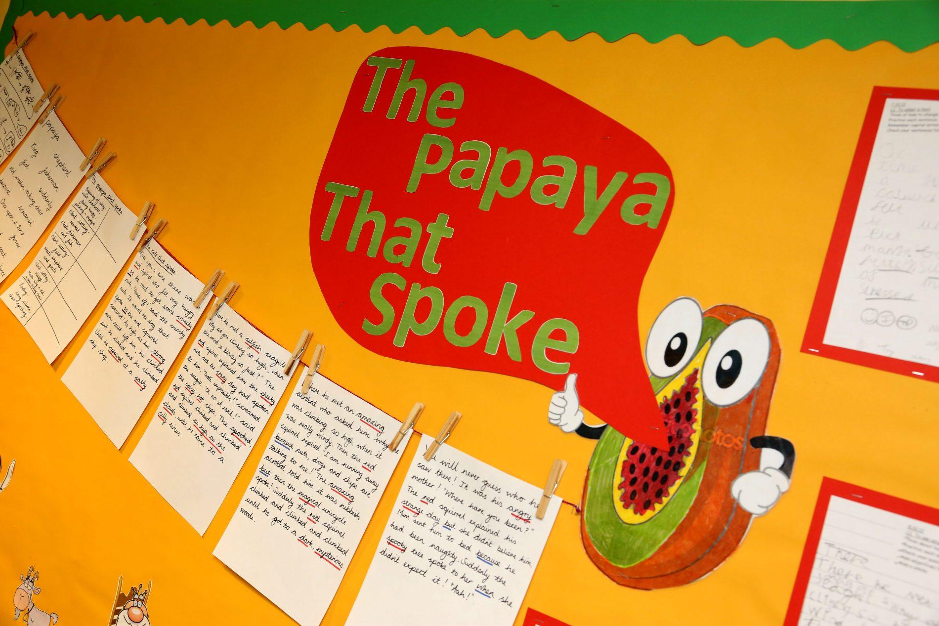 Papaya That Spoke display West St Leonards Primary Academy